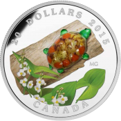 Canada 2015 20$ Broadleaf Arrowhead Flower with Venetian Glass Turtle (2015) Proof Silver Coin
