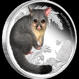 Australia 2013 50 cents Possum Australian Bush Babies II 1/2oz Proof Silver Coin