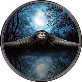 Ivory Coast 2017 2000 francs Nocturnal Owl Night Hunters 3 oz BU Silver Coin